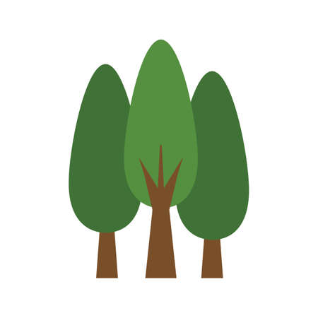 cypress: cypress trees Illustration