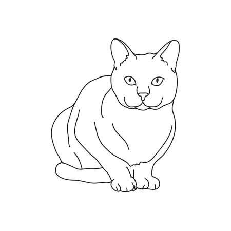 Katze Vektorgrafik