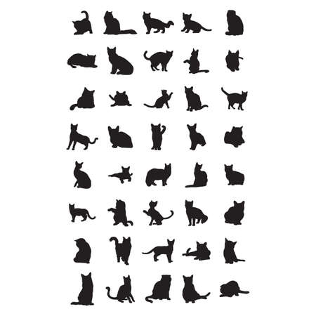 feline: silhouettes of cats