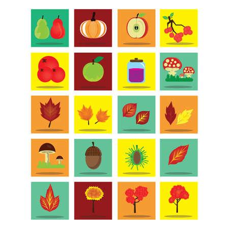 butternut squash: autumn season collection