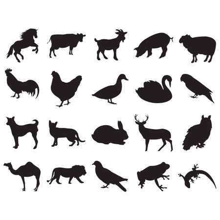 animal silhouette: animal silhouette collection