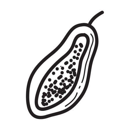 papaya: papaya cut into half Illustration