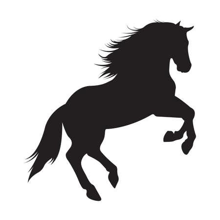 silhouet van paard