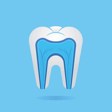 nervios: nervios en diente