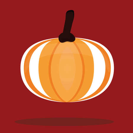 squash: acorn squash