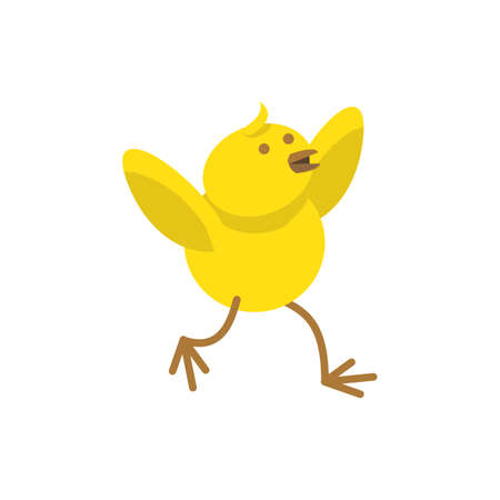 chick: easter chick Illustration