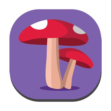 mushrooms: mushrooms Illustration
