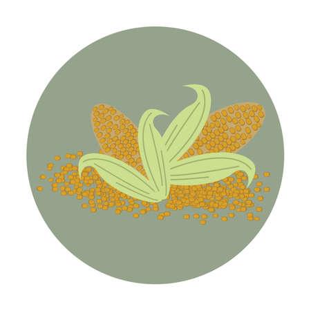 the kernel: corn