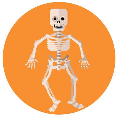 skeleton man: Skelett Mann