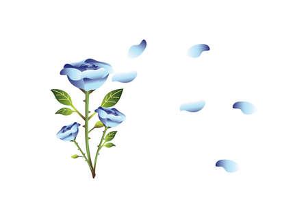 blue rose: blue rose design Illustration