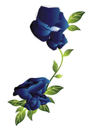 blauwe roos ontwerp
