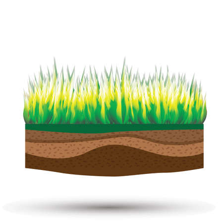 cultivo con tierra