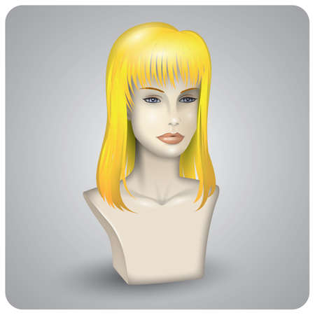 wigs: hair wig on the mannequin
