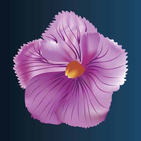 flowers close up: flower