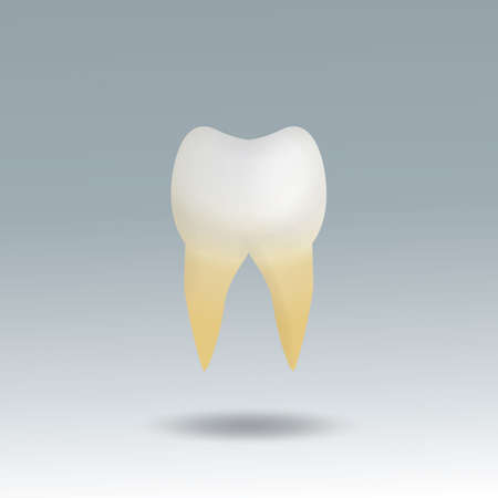 plaque: molar tooth with plaque