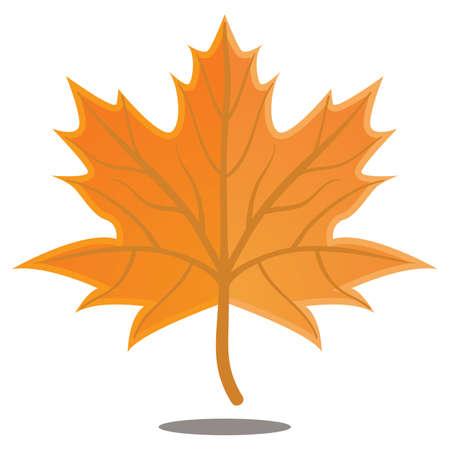 hoja de otoño de arce naranja