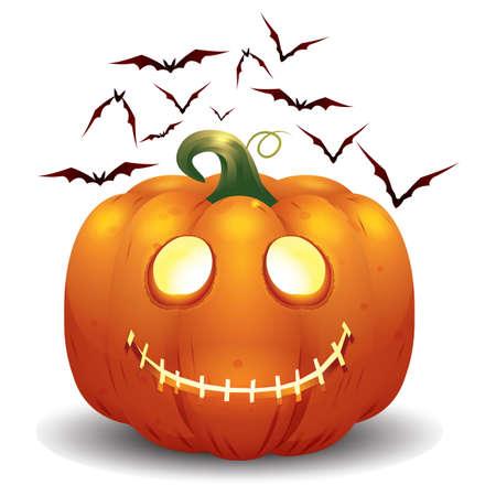 wildlife smile: halloween pumpkin and bats Illustration
