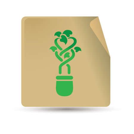 Topfpflanze Standard-Bild - 81469395