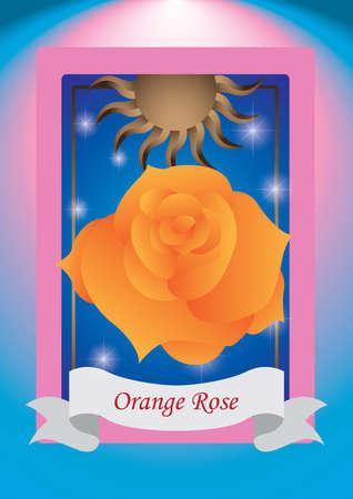 orange rose: orange rose label Illustration
