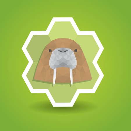 the walrus: walrus label