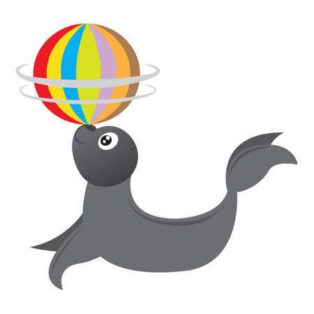 spinning: seal animal spinning ball on nose