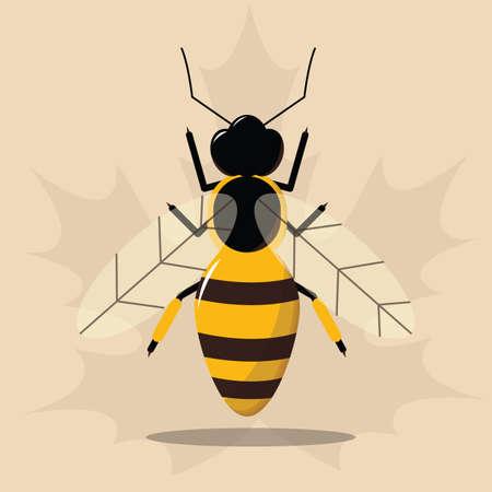 honeybee: autumn honeybee