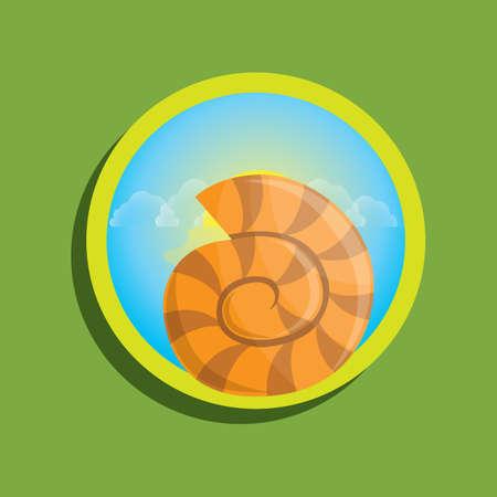 molluscs: seashell Illustration