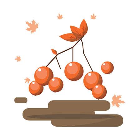 eberesche: Ebereschenfrucht