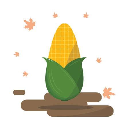 corncob: autumn corn