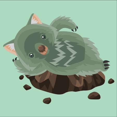 lying: wombat lying down on a rock
