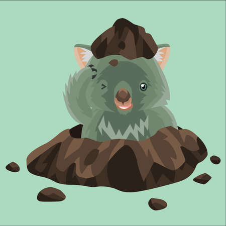 appearing: wombat appearing from the ground