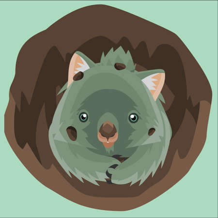 burrowing: wombat burrowing a hole