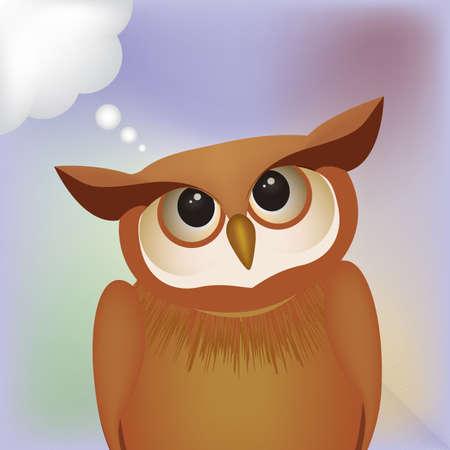 contemplate: owl