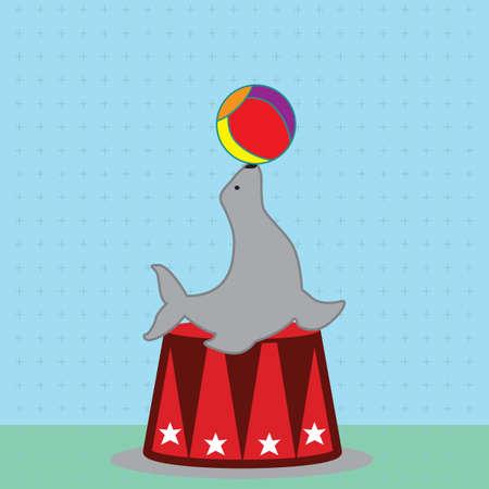 circus seal playing with ball