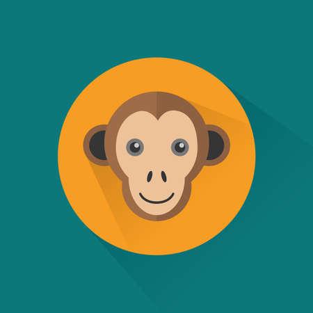 primate: monkey