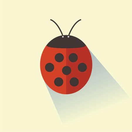 antennae: ladybird