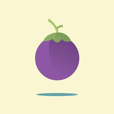 mangosteen: mangosteen Illustration