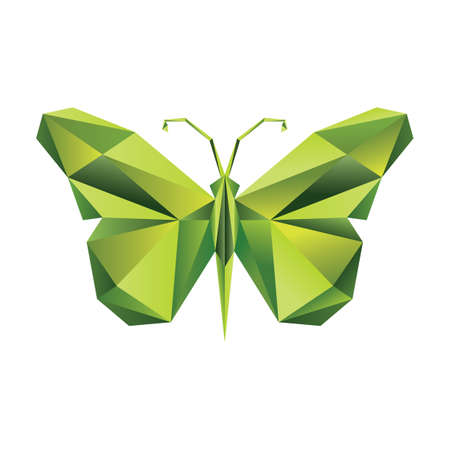 faceted: faceted butterfly Illustration