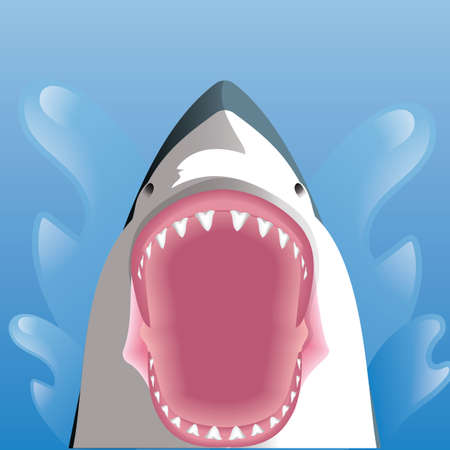 opened mouth: shark with opened mouth Illustration