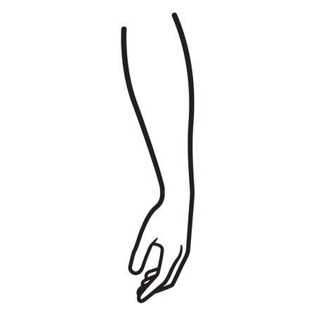 mano  Ilustración de vector