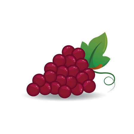 religious celebration: grapes Illustration