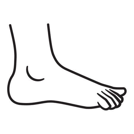 a leg: leg