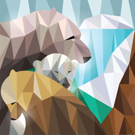faceted: faceted bears