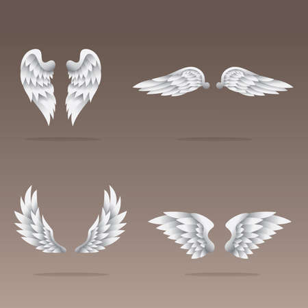 angelic: set of angel wings