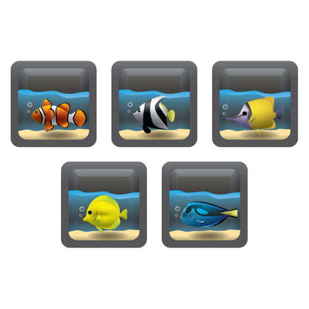clown tang: set of fishes in an aquarium