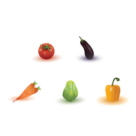 aubergine: vegetables collection