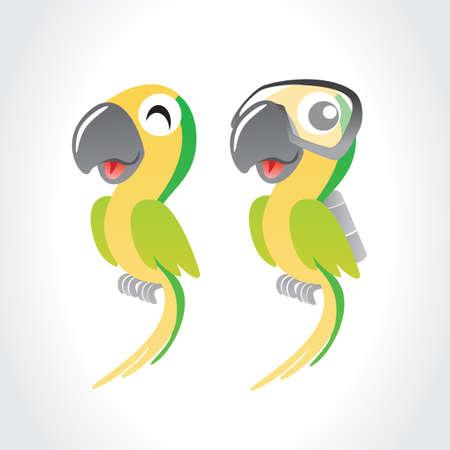 parrots: parrots Illustration