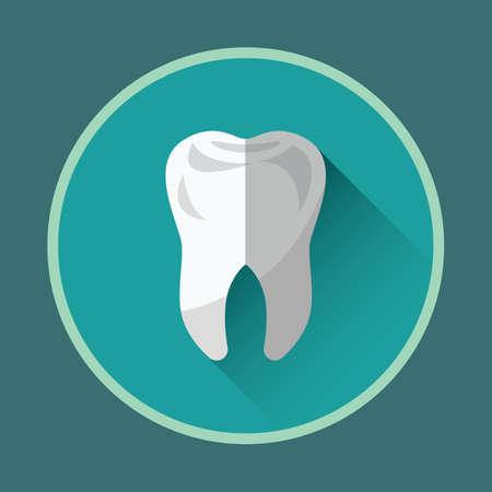 Gesunder Zahn Standard-Bild - 81418807
