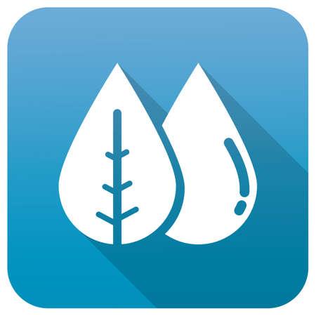 leaf water drop: leaf and water drop