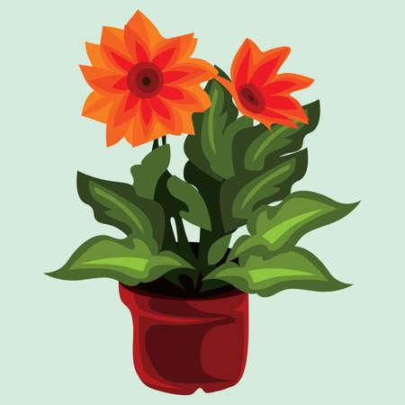 plant pot: flower plant in pot